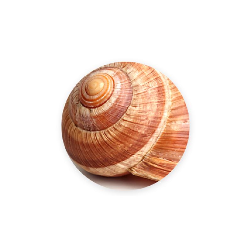 Savon & Creme de bave d'escargot : Tous les produits